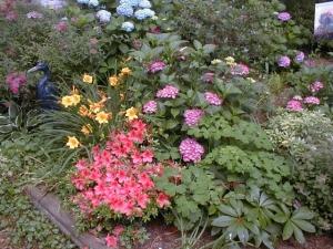 Mixed Hydrangea/Daylily