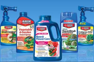 Active ingredient in these products for lawns, flowers and vegetables is imidacloprid