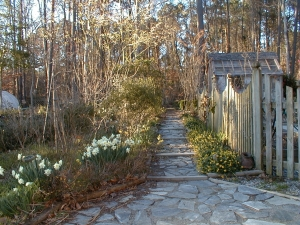 Late afternoon in spring, the gate is open, we can move forward one step at a time