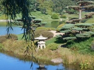 """Clouds"" in the Japanese Garden"