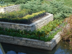 Snugly planted terraces protect against erosion