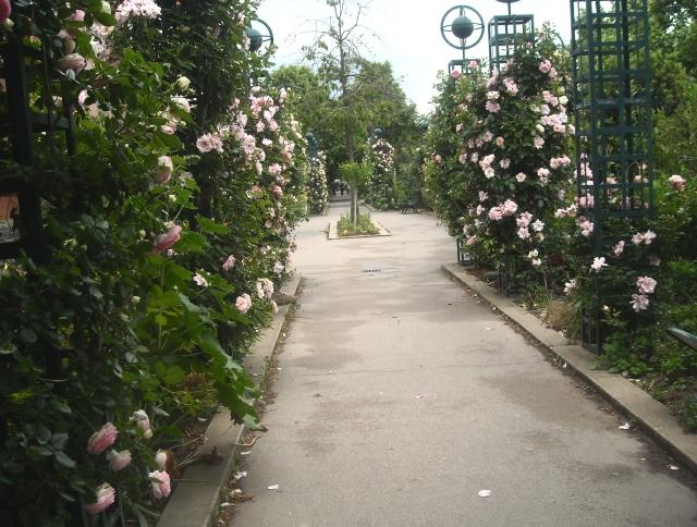 Paris: Promenade Plantee | A Heron's Garden on